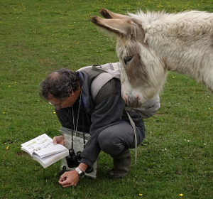 Botanist and donkey